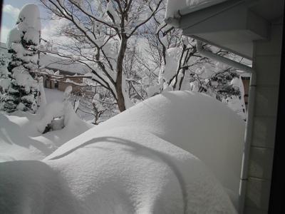 屋根につく雪