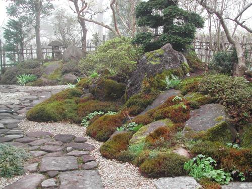 杉苔ベースのうちの庭