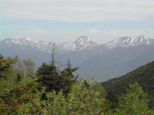 しらたま平からの山々